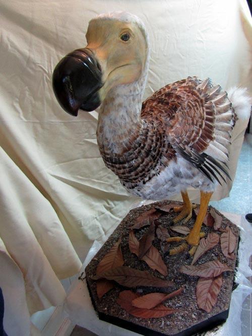 Konstrukcija i anatomska obrada ptice dodo